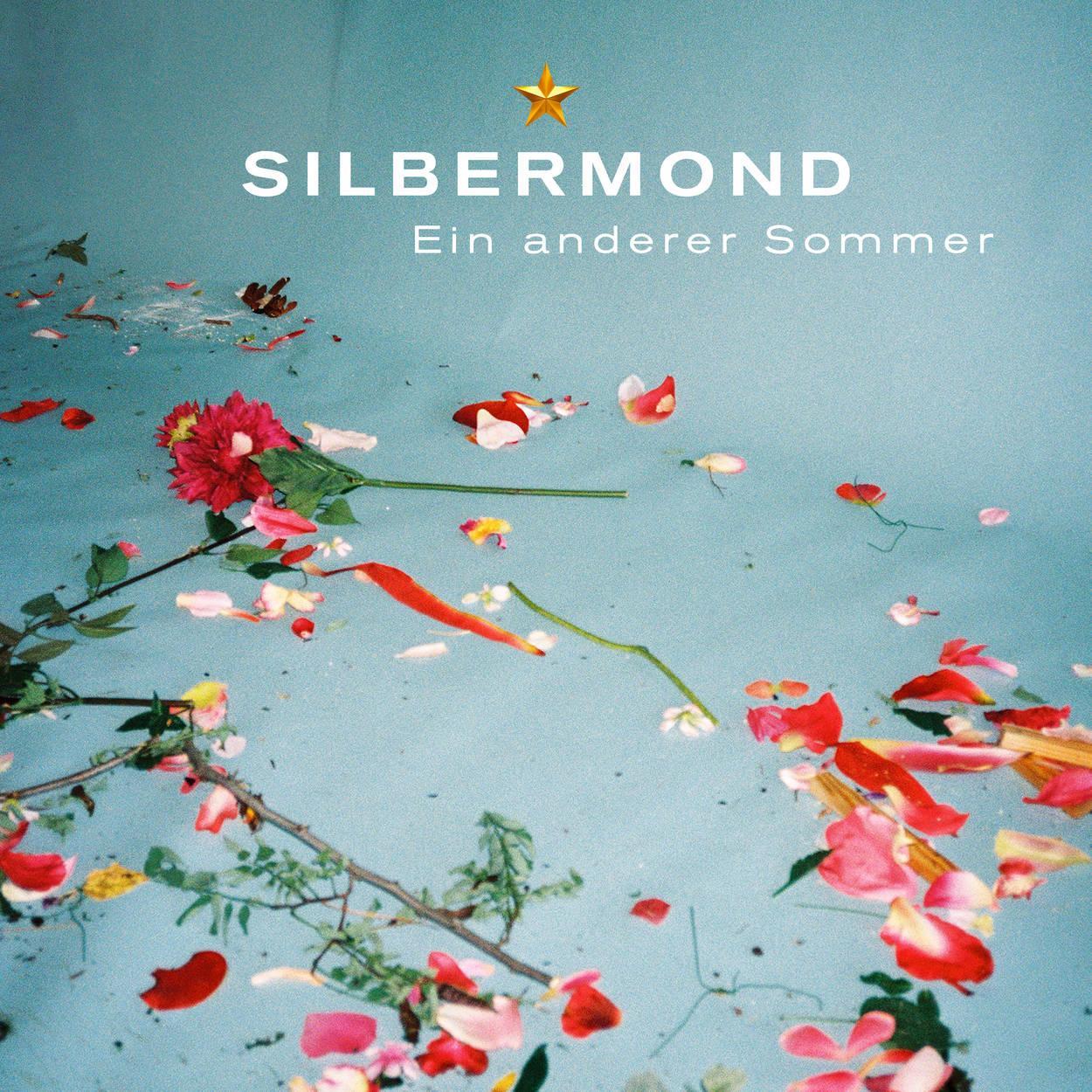 Ein anderer Sommer Cover